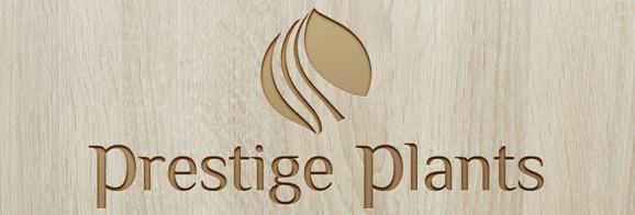 Prestige Plants